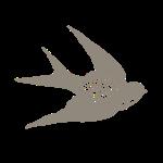 cropped-bird_frei